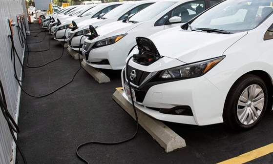 وزيرة التجارة والصناعة تصدر قراراً باشتراطات الافراج عن سيارات الركوب الكهربائية
